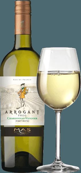 Arrogant Frog 's Ribet Blanc je hodvábna francúzska biela vinárska cuvée vyrobená z odrôd hrozna Chardonnay (70%) a Viognier (30%). V pohári sa toto víno objavuje v bohatej zlatožltej farbe so zelenavými nuansami. Toto francúzske biele víno zaujme elegantným nosom, ktorý kombinuje ovocné vône tropického ovocia, ako je ananás a broskyňa, a čerstvé citrusové ovocie s nádychom vanilky. Ovocné vône nosa sa odrážajú aj na poschodí. Hodvábne, čerstvé telo je podporované krásne vyváženou kyslosťou. Toto víno končí dlhým ozvením. Vinifikácia Ribet Blanc Chardonnay Viognier Arogant Frog Po zbere hrozna sa zozbieraný materiál najprv úplne odstráni vo vinárskej pivnici. Tieto dve odrody hrozna pre toto víno sa vinifikujú samostatne. Mušt sa fermentuje v nádržiach z nehrdzavejúcej ocele pri kontrolovanej teplote (max. 18 stupňov Celzia) približne 3 týždne. 30% z Chardonnay dozrieva v dubových sudoch - zvyšných 70% a Viognier zostáva v nádržiach z nehrdzavejúcej ocele. Odporúčanie jedla pre arogantné žaby Chardonnay Viognier Vychutnajte si chrumkavú zeleninu, sushi, stredomorské morské plody a rybie pokrmy, bielu hydinu, ovocné dezerty a ázijskú kuchyňu. Ocenenia pre Ribet Blanc Arogantná žaba Mundus Vini: striebro za rok 2017 Mundus Vini: zlato za rok 2016