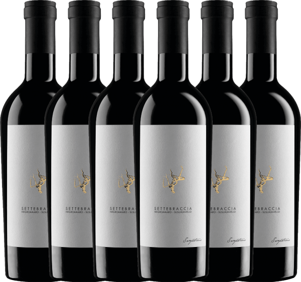 6er Vorteils-Weinpaket - Settebraccia Rosso 2017 - Cantina Sampietrana