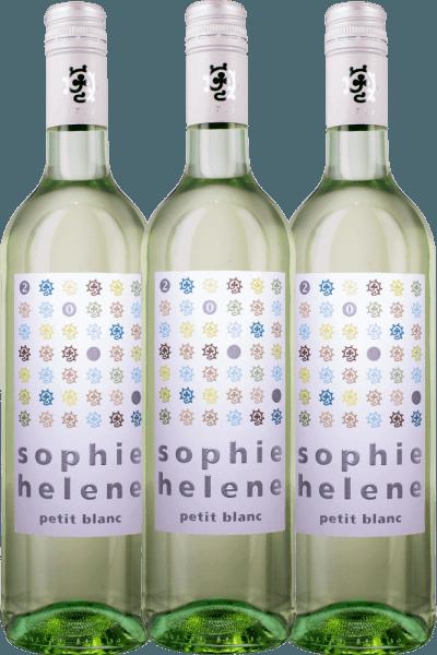 3er Vorteils-Weinpaket - Sophie Helene petit blanc 2020 - Weingut Hammel