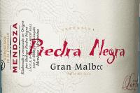 Vorschau: Gran Malbec 2015 - Bodega Piedra Negra