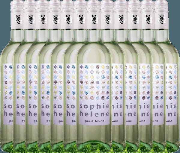 12er Vorteils-Weinpaket - Sophie Helene petit blanc 2020 - Weingut Hammel